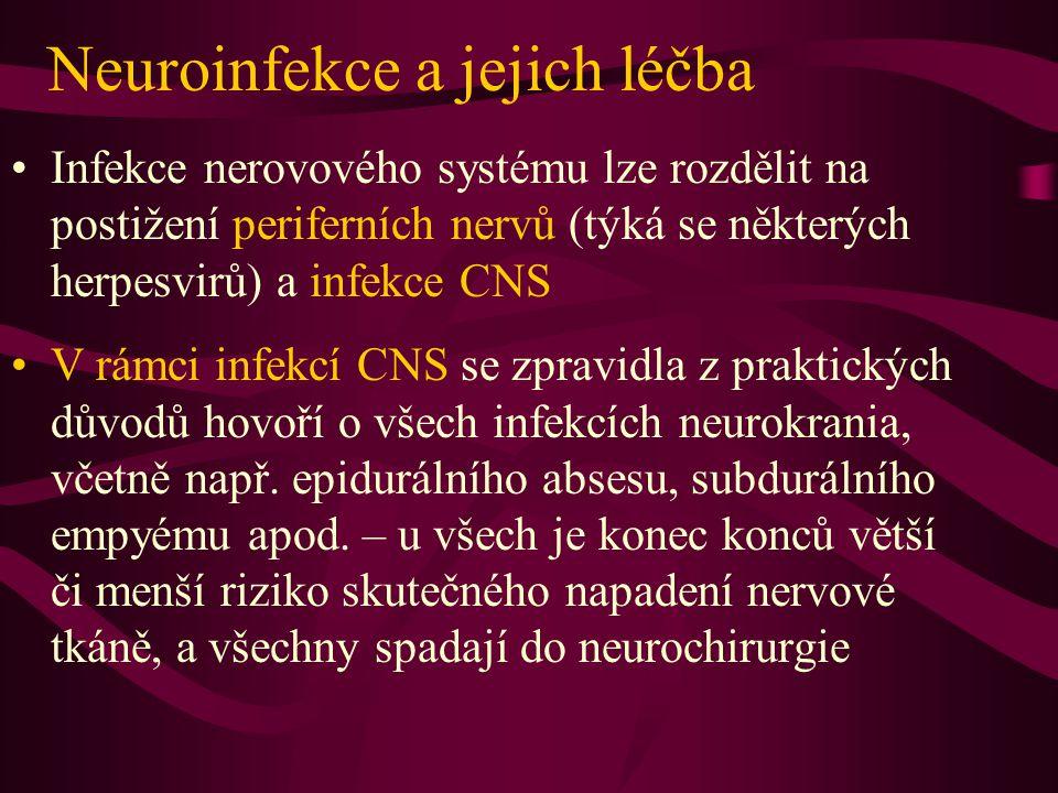 Neuroinfekce a jejich léčba
