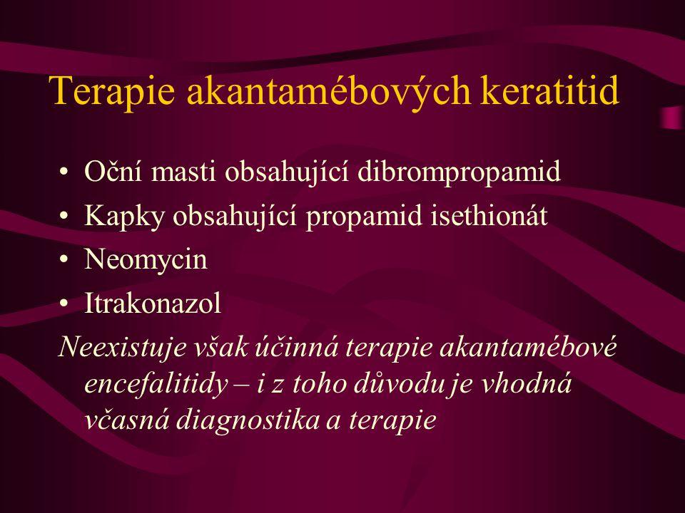 Terapie akantamébových keratitid
