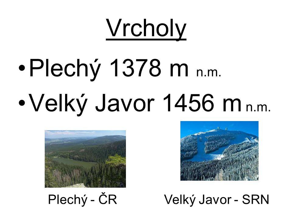 Vrcholy Plechý 1378 m n.m. Velký Javor 1456 m n.m.