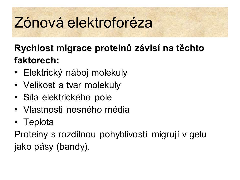 Zónová elektroforéza Rychlost migrace proteinů závisí na těchto