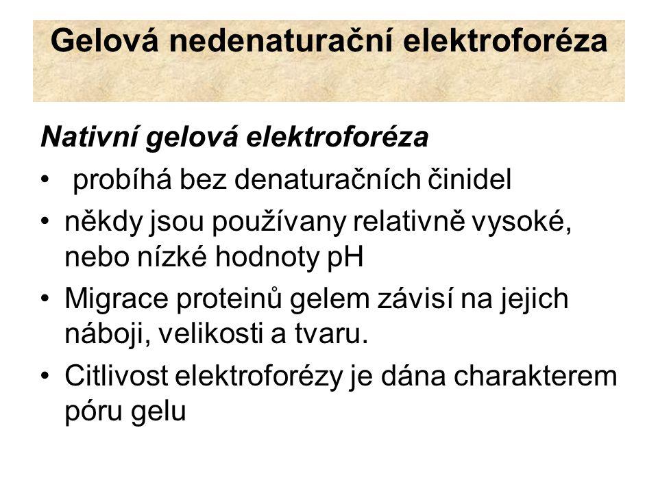 Gelová nedenaturační elektroforéza