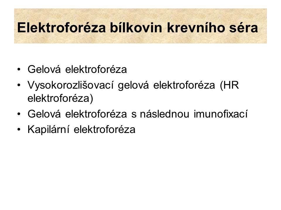 Elektroforéza bílkovin krevního séra