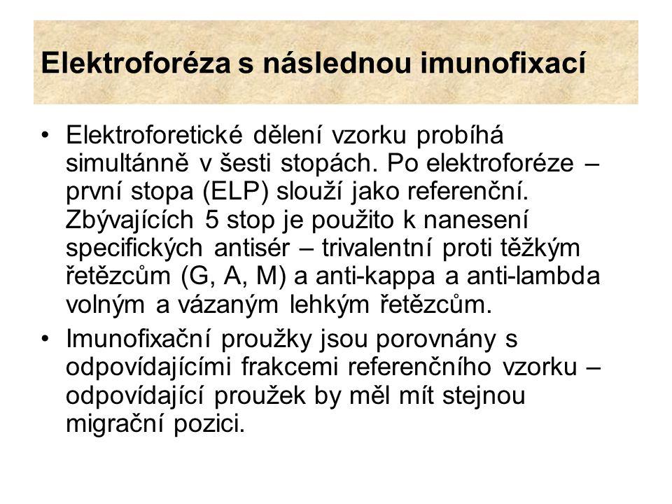Elektroforéza s následnou imunofixací