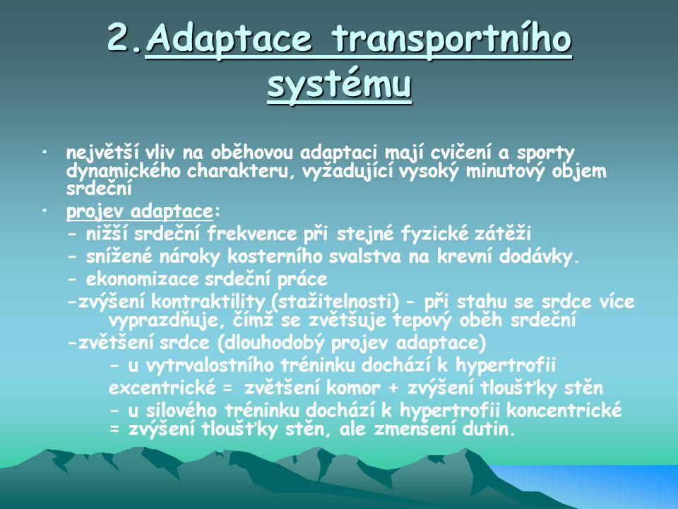 2.Adaptace transportního systému