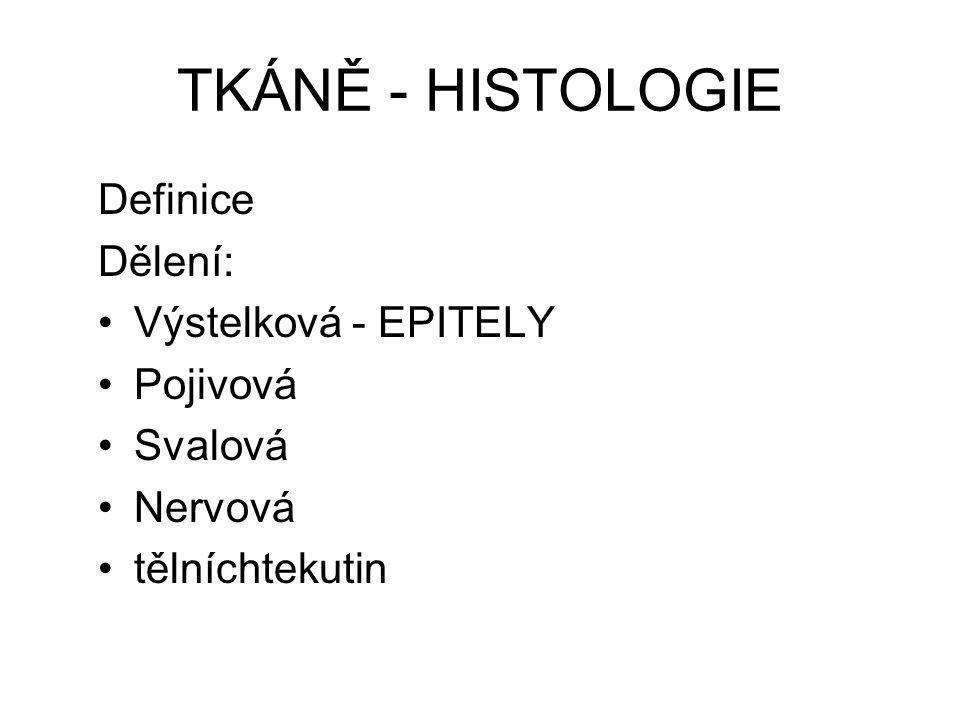 TKÁNĚ - HISTOLOGIE Definice Dělení: Výstelková - EPITELY Pojivová