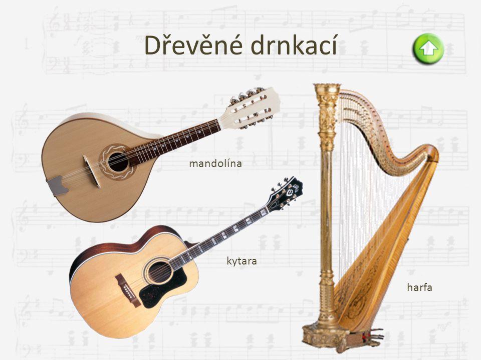 Dřevěné drnkací mandolína kytara harfa