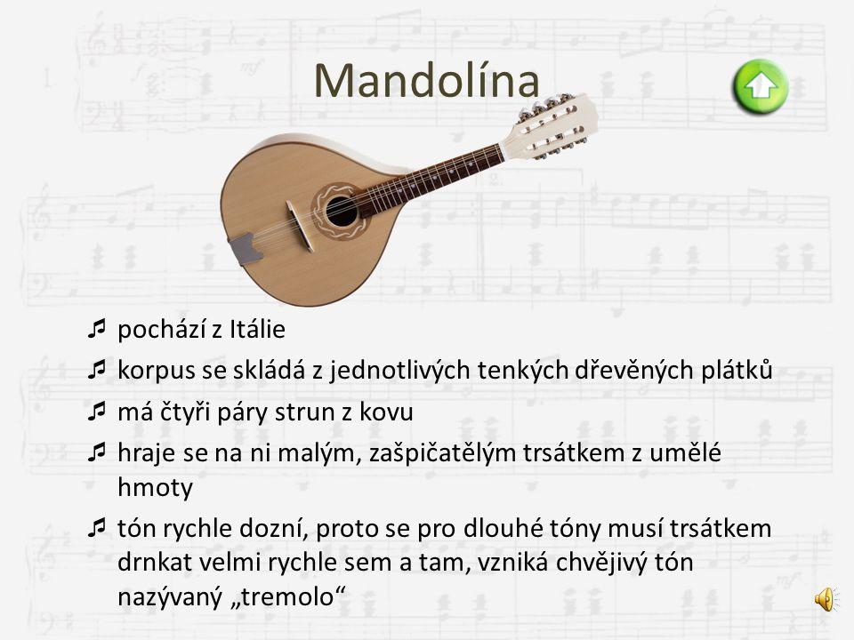 Mandolína pochází z Itálie