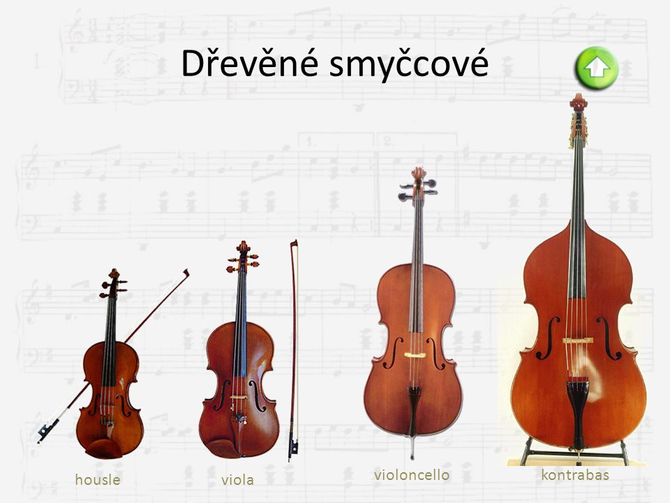 Dřevěné smyčcové violoncello kontrabas housle viola