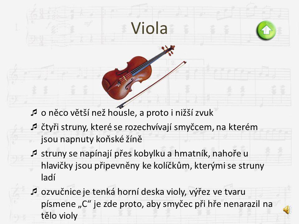 Viola o něco větší než housle, a proto i nižší zvuk