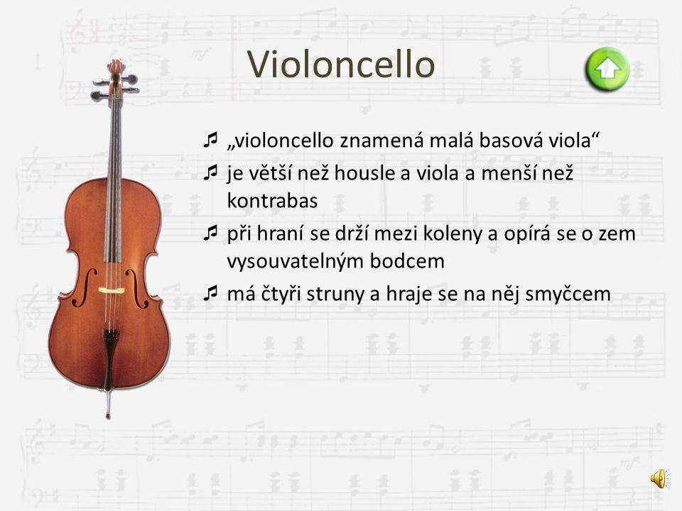 """Violoncello """"violoncello znamená malá basová viola"""