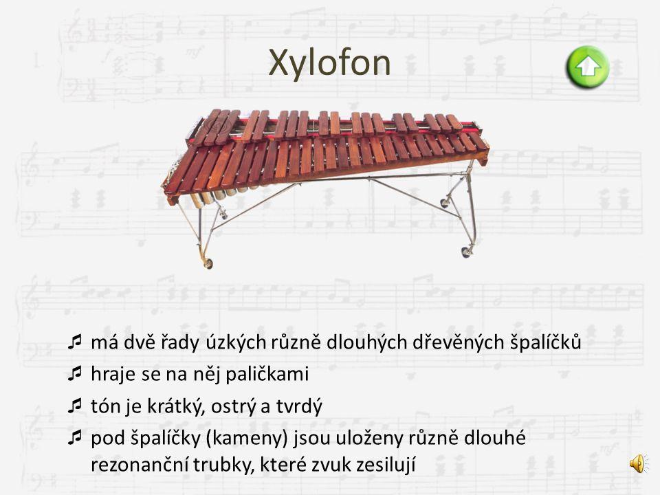 Xylofon má dvě řady úzkých různě dlouhých dřevěných špalíčků