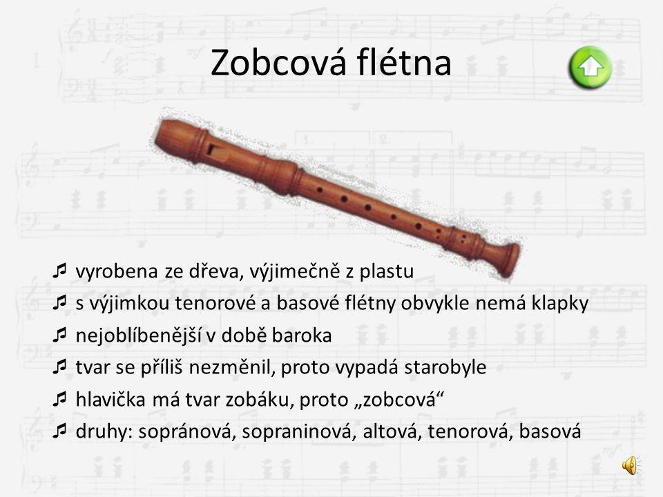 Zobcová flétna vyrobena ze dřeva, výjimečně z plastu