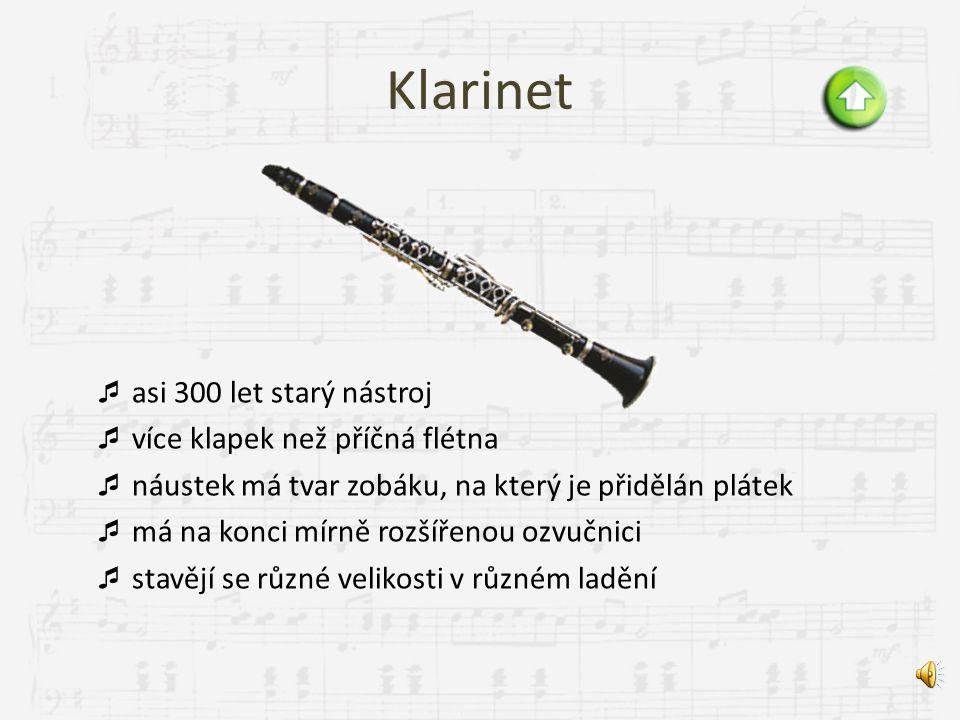 Klarinet asi 300 let starý nástroj více klapek než příčná flétna
