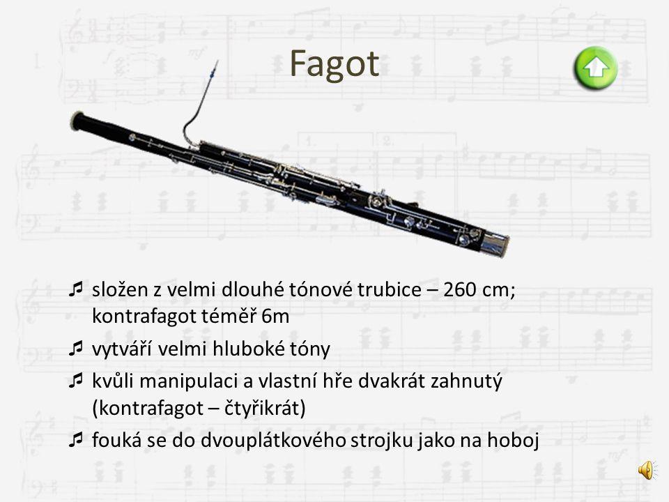 Fagot složen z velmi dlouhé tónové trubice – 260 cm; kontrafagot téměř 6m. vytváří velmi hluboké tóny.
