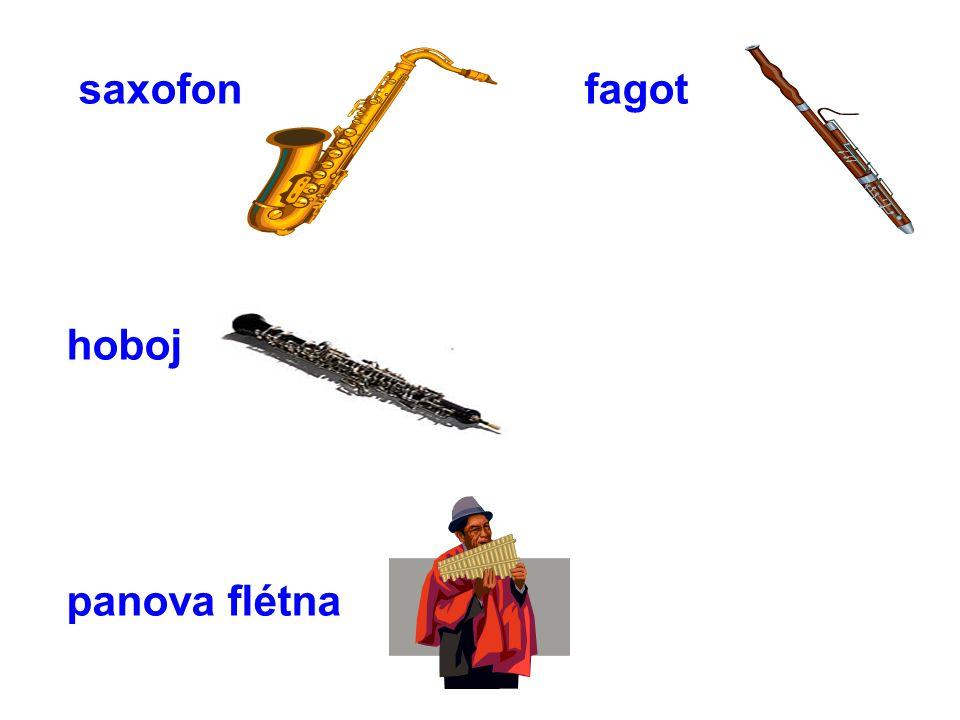 saxofon fagot hoboj panova flétna