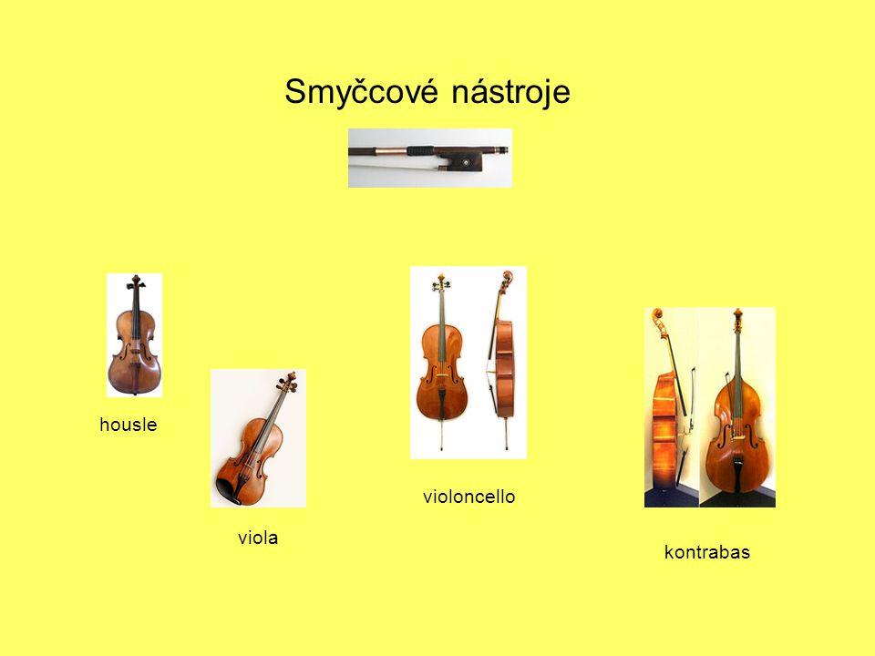 Smyčcové nástroje housle violoncello viola kontrabas