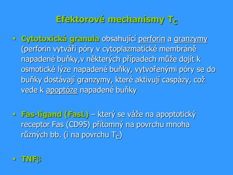 Efektorové mechanismy TC