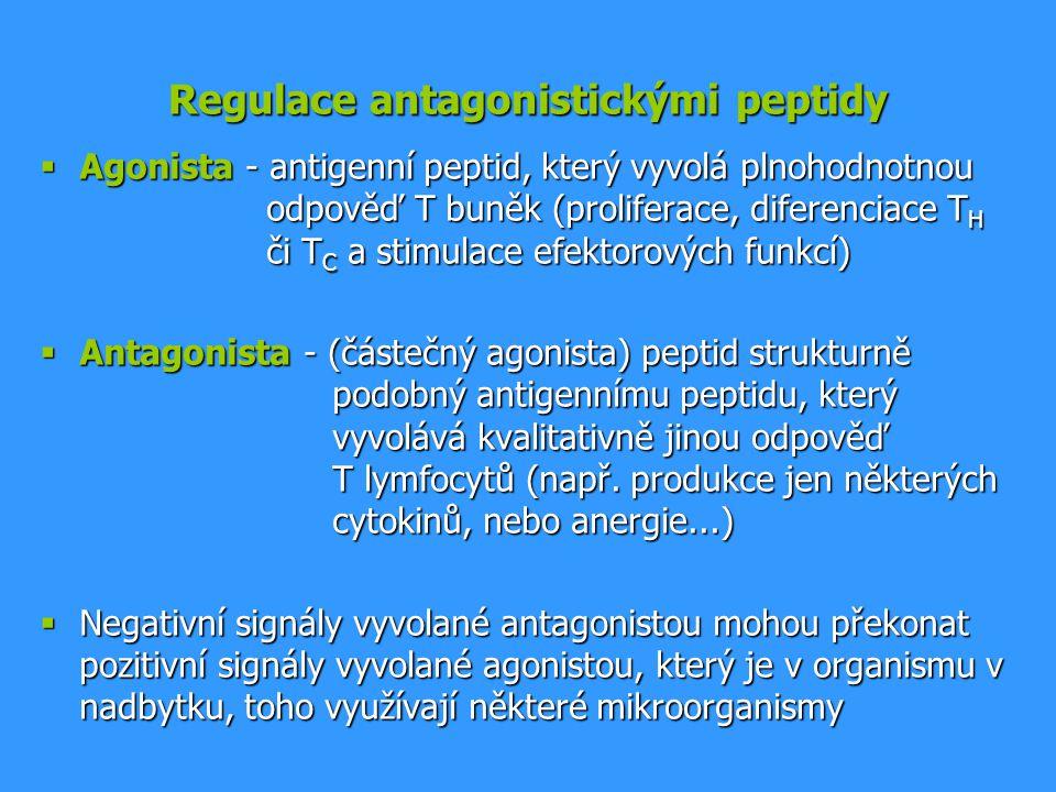 Regulace antagonistickými peptidy