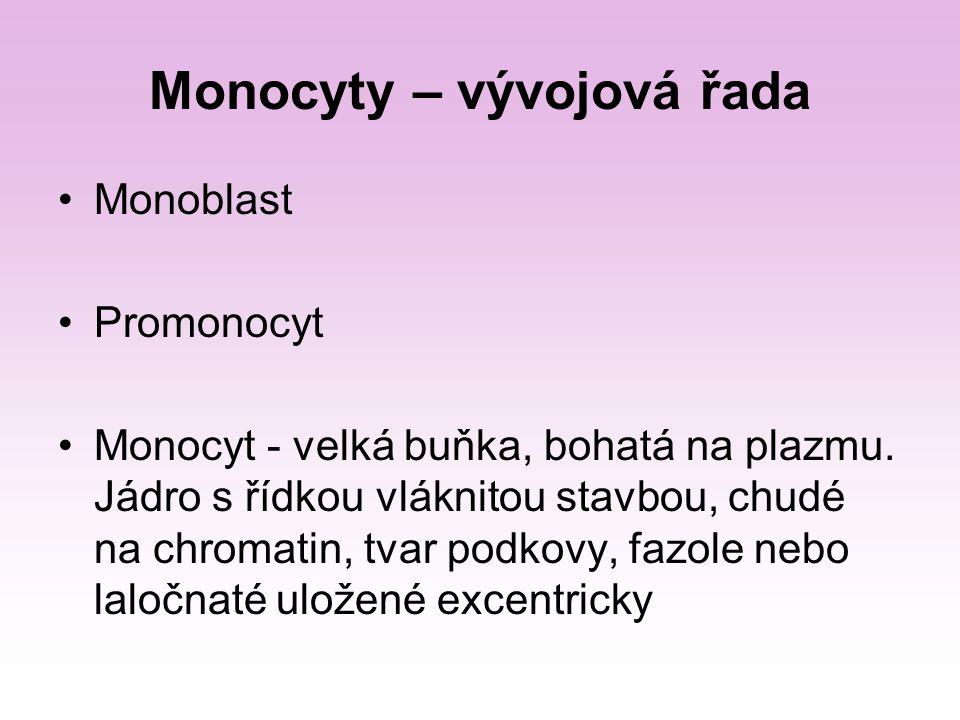 Monocyty – vývojová řada