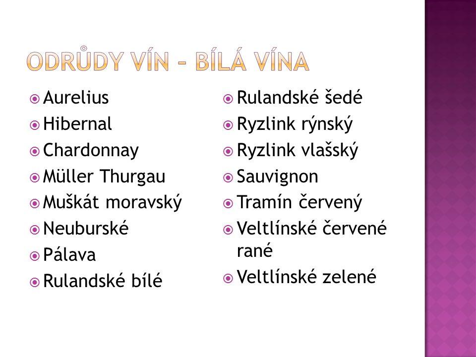 Aurelius Hibernal. Chardonnay. Müller Thurgau. Muškát moravský. Neuburské. Pálava. Rulandské bílé.