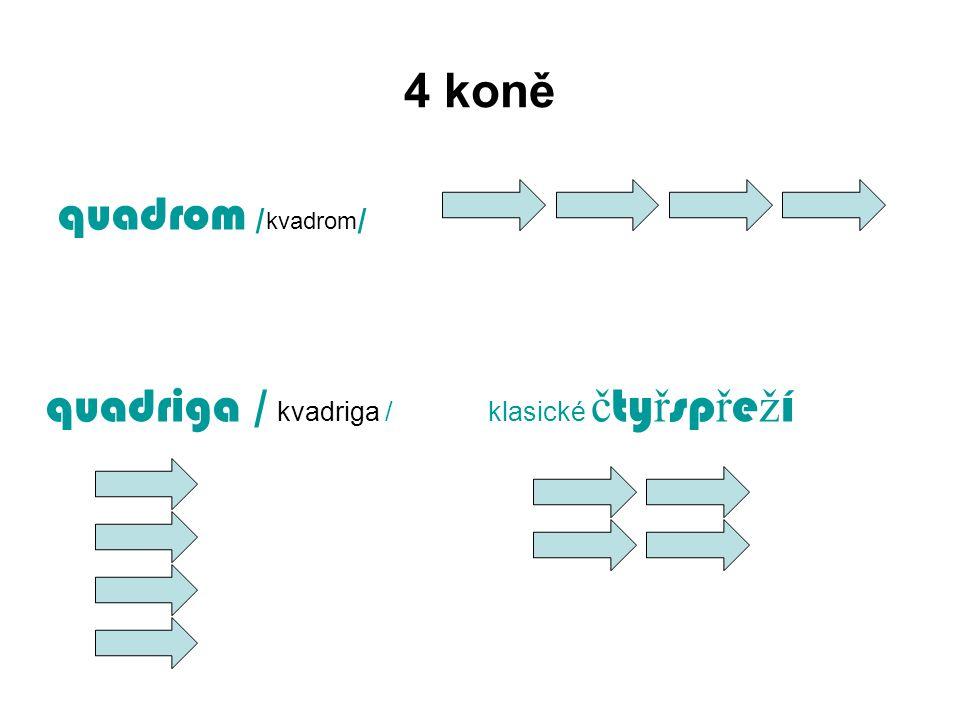 4 koně quadrom /kvadrom/ quadriga / kvadriga / klasické čtyřspřeží