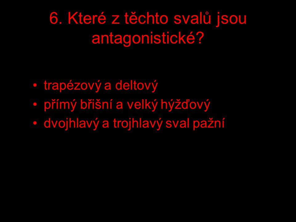 6. Které z těchto svalů jsou antagonistické