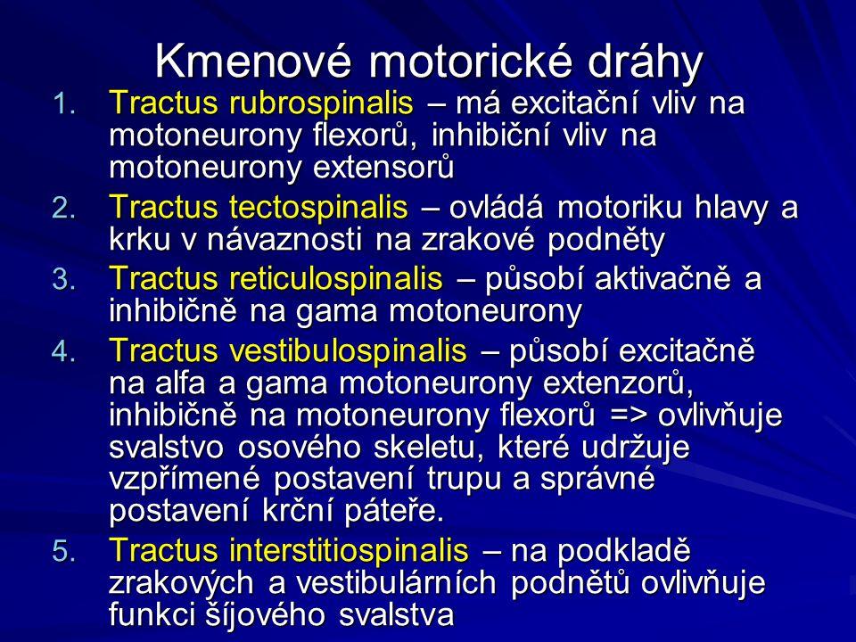 Kmenové motorické dráhy