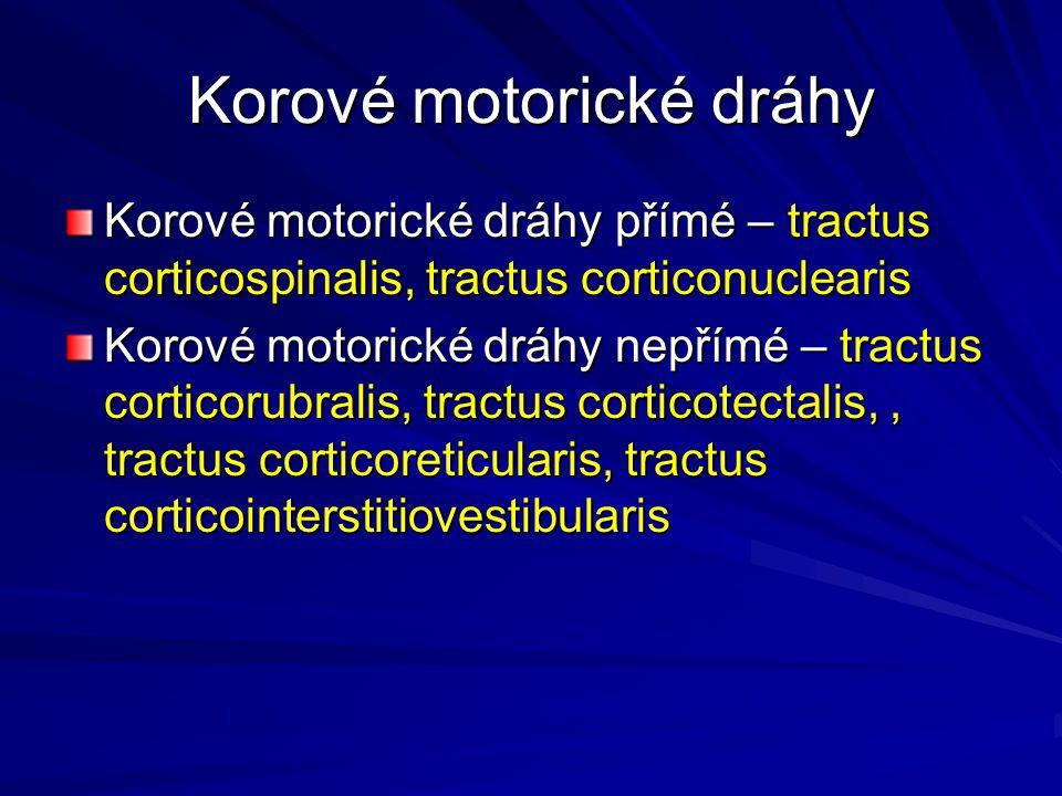 Korové motorické dráhy