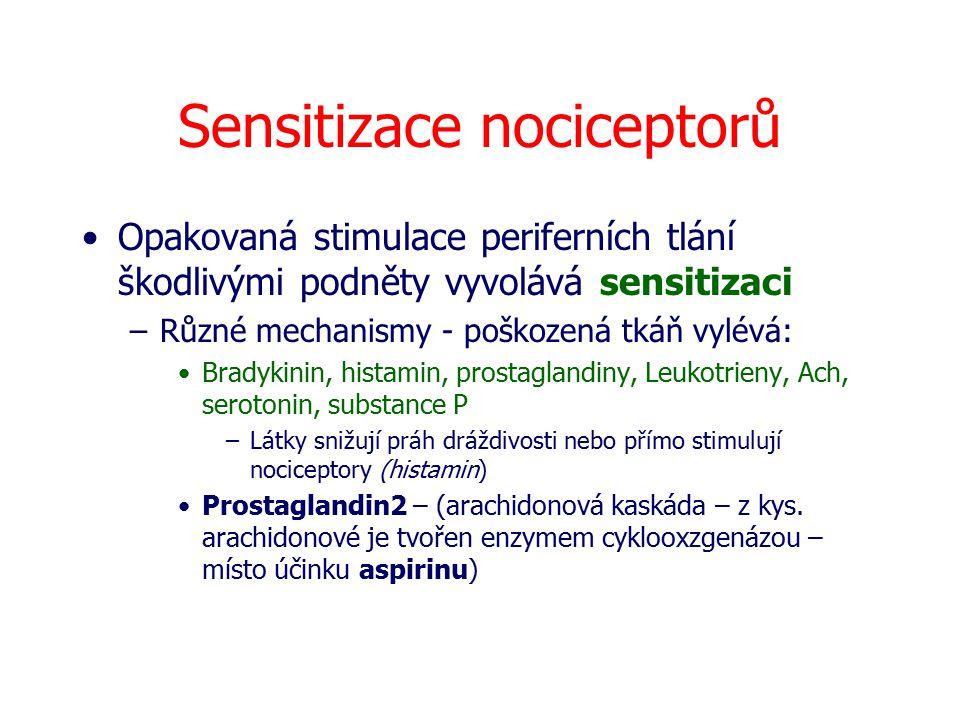 Sensitizace nociceptorů