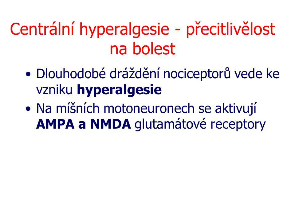 Centrální hyperalgesie - přecitlivělost na bolest