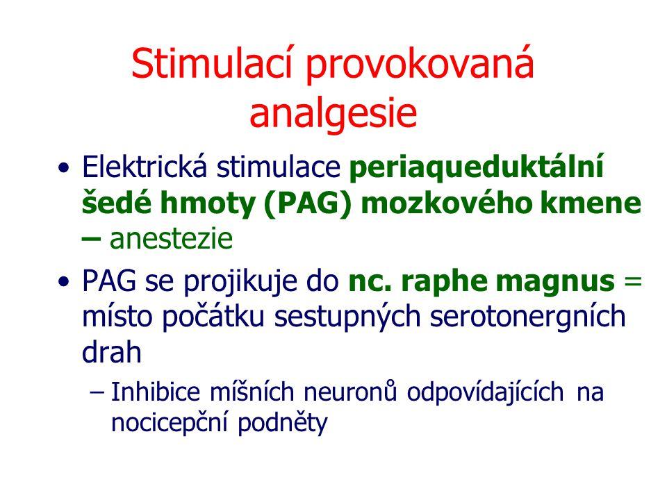 Stimulací provokovaná analgesie