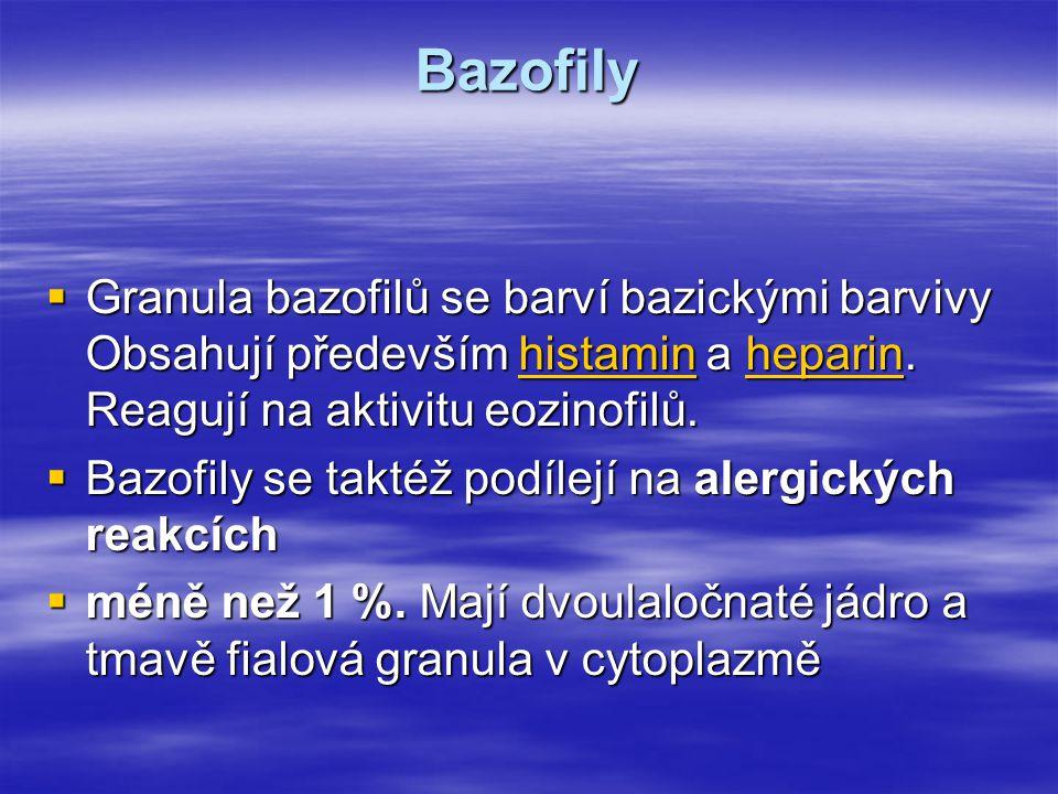 Bazofily Granula bazofilů se barví bazickými barvivy Obsahují především histamin a heparin. Reagují na aktivitu eozinofilů.