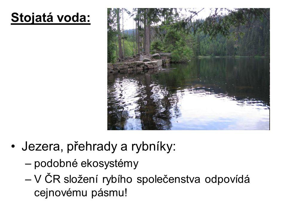 Jezera, přehrady a rybníky: