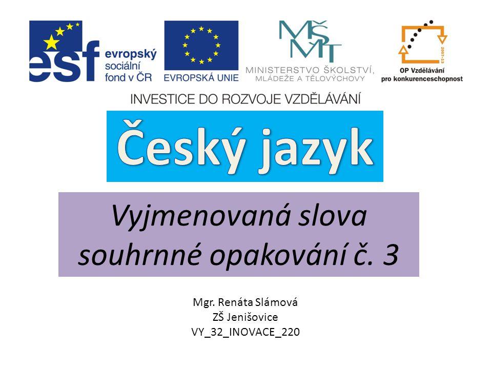 Český jazyk Vyjmenovaná slova souhrnné opakování č. 3