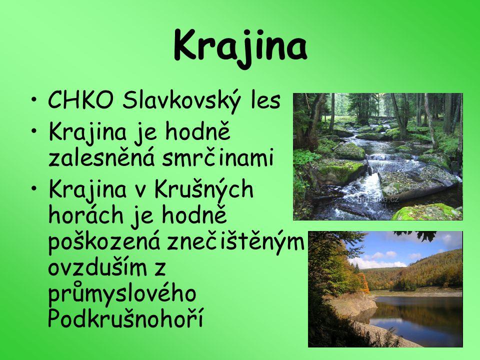 Krajina CHKO Slavkovský les Krajina je hodně zalesněná smrčinami