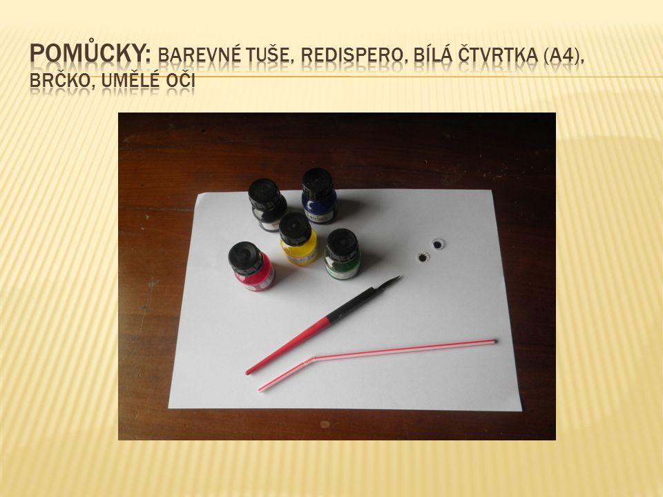 Pomůcky: barevné tuše, redispero, bílá čtvrtka (A4), brčko, umělé oči