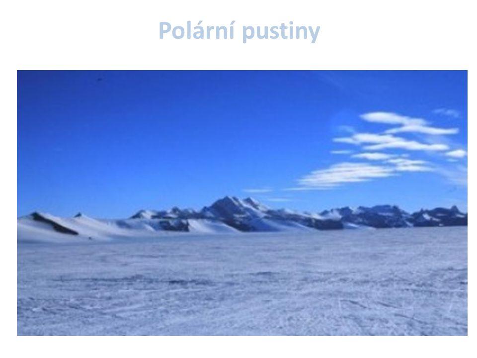 Polární pustiny Zaujímají téměř celé území Grónska a arktických ostrovů (Baffinův ostrov,..)