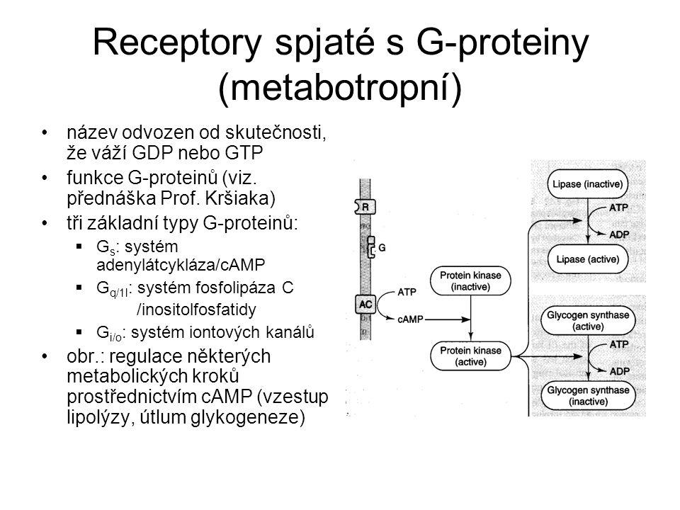 Receptory spjaté s G-proteiny (metabotropní)