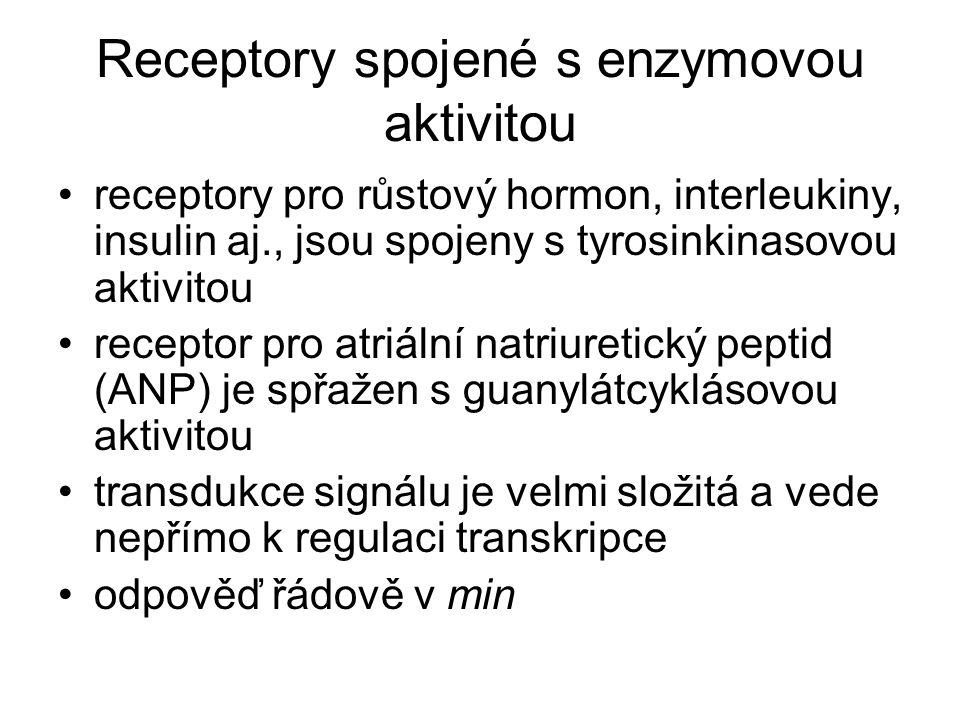 Receptory spojené s enzymovou aktivitou