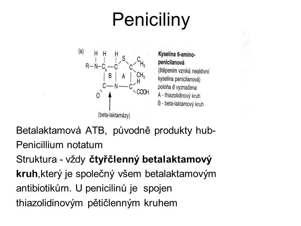 Peniciliny Betalaktamová ATB, původně produkty hub-