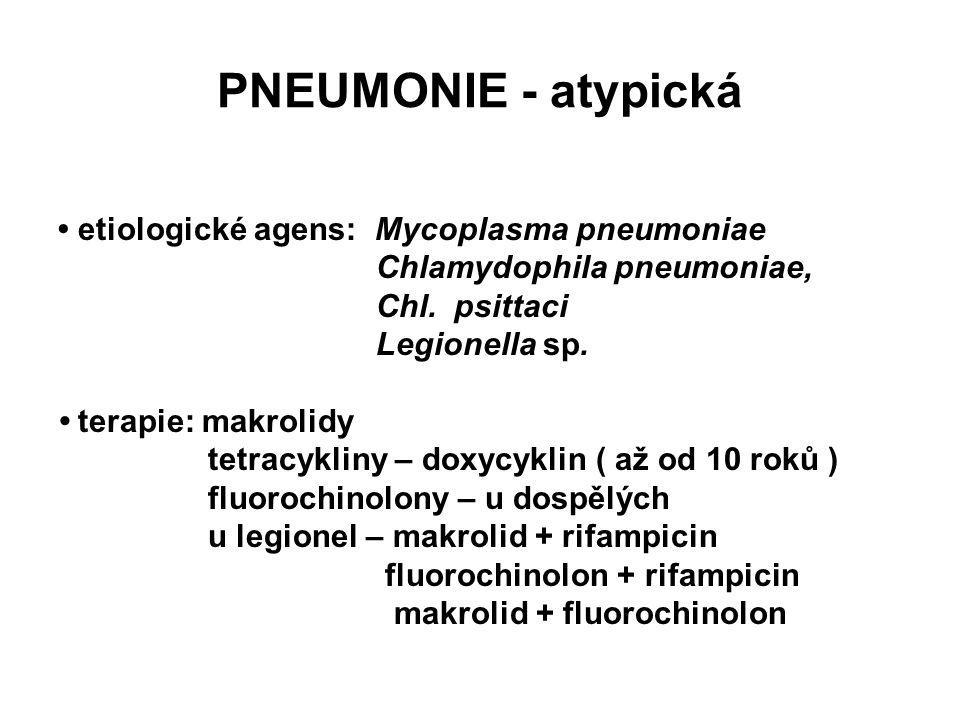 PNEUMONIE - atypická • etiologické agens: Mycoplasma pneumoniae