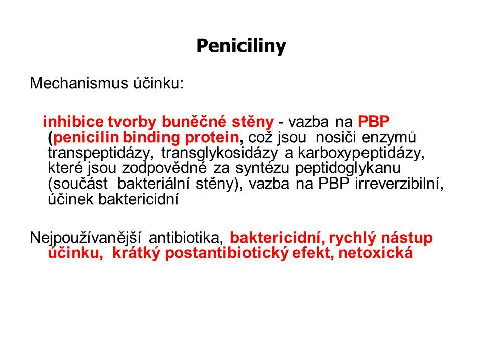 Peniciliny Mechanismus účinku: