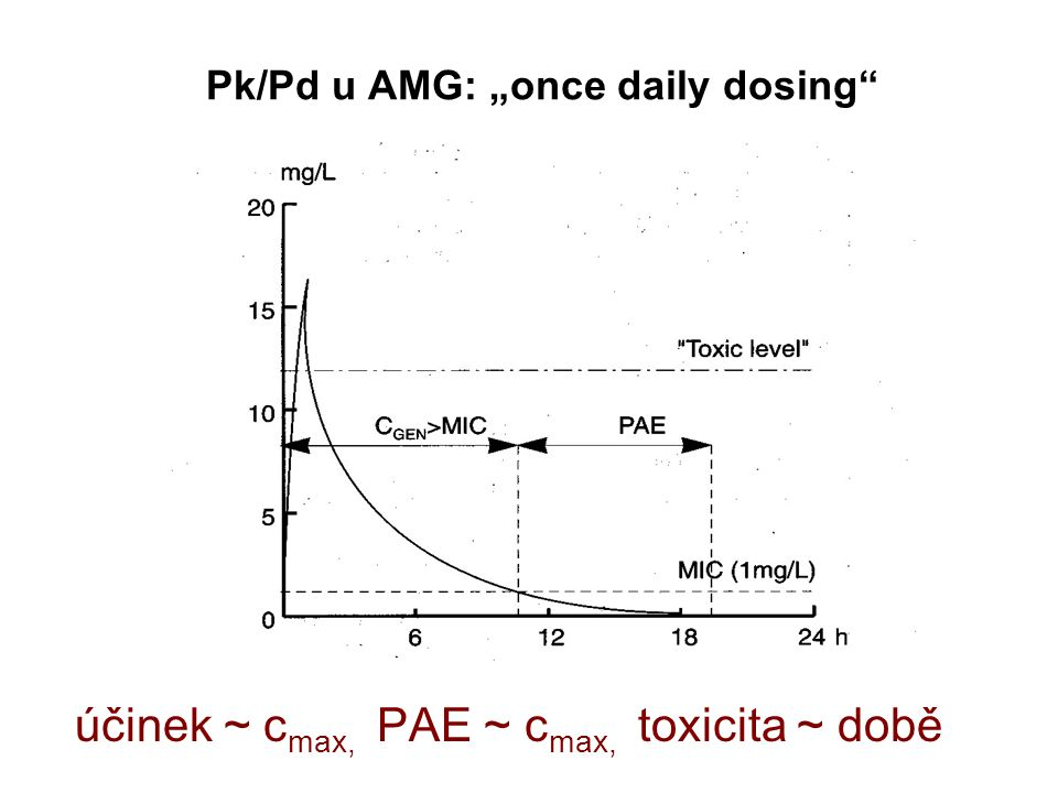 "Pk/Pd u AMG: ""once daily dosing"