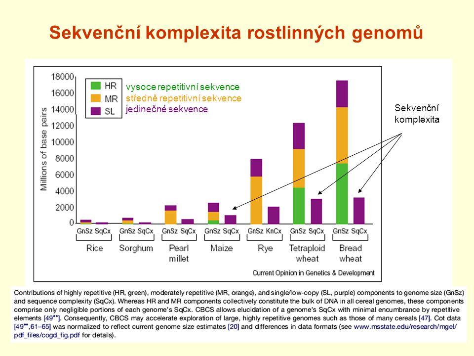 Sekvenční komplexita rostlinných genomů