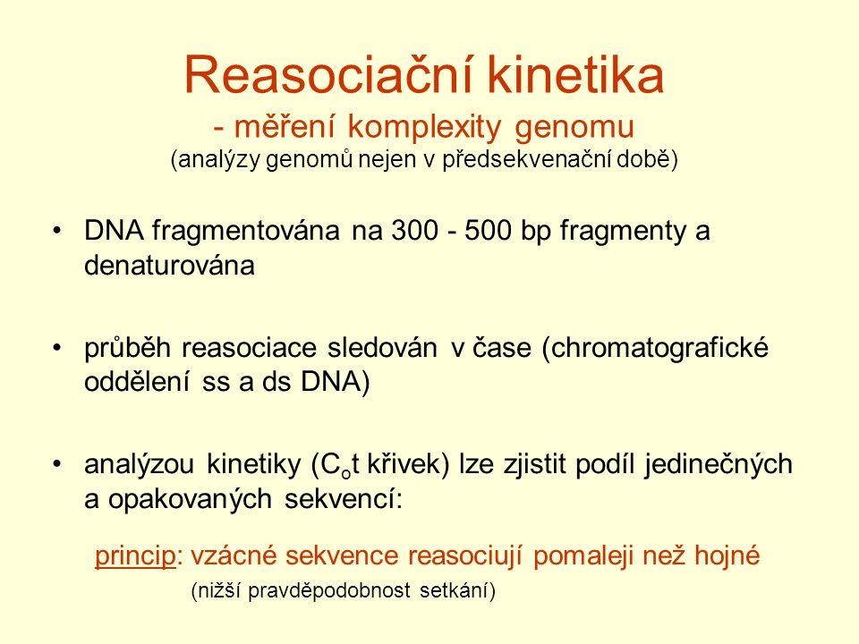 Reasociační kinetika - měření komplexity genomu (analýzy genomů nejen v předsekvenační době)