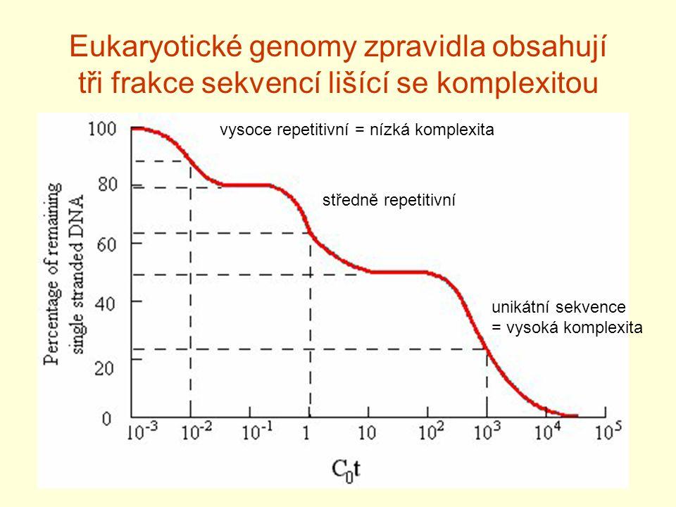 Eukaryotické genomy zpravidla obsahují tři frakce sekvencí lišící se komplexitou