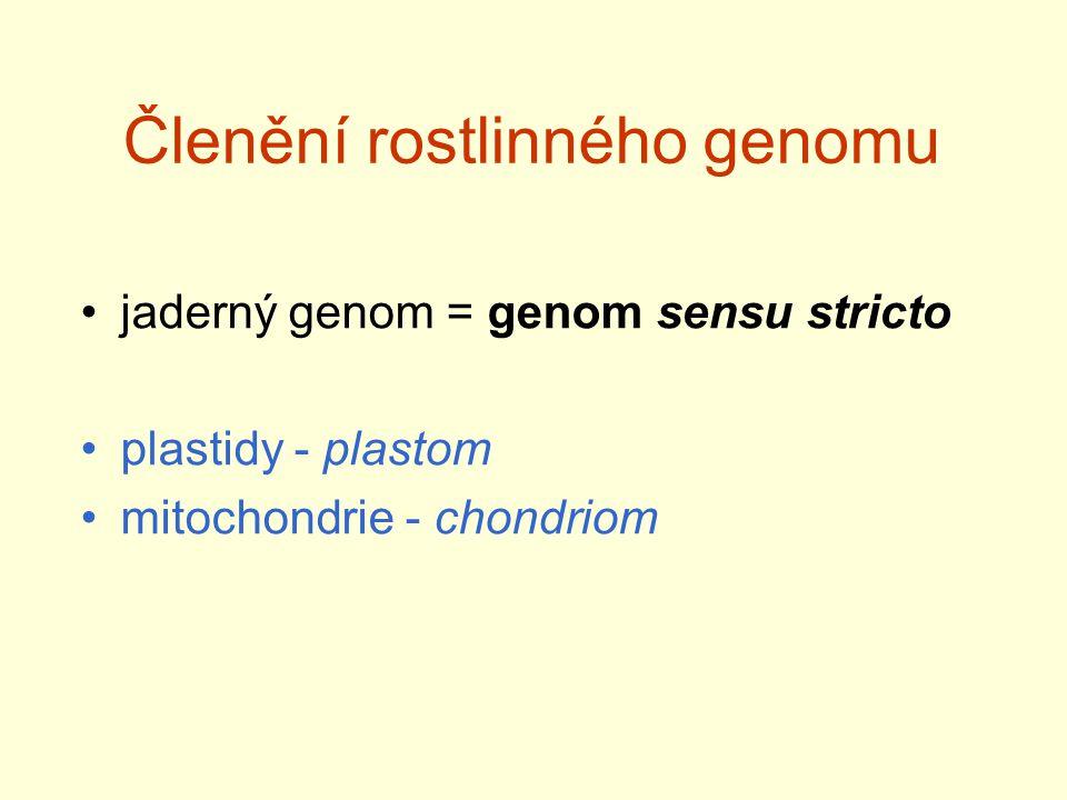 Členění rostlinného genomu