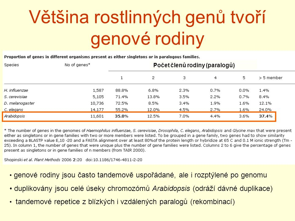 Většina rostlinných genů tvoří genové rodiny