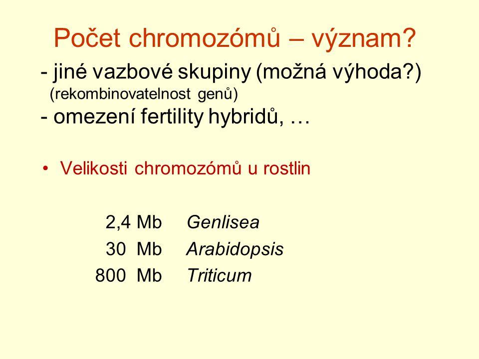 Počet chromozómů – význam