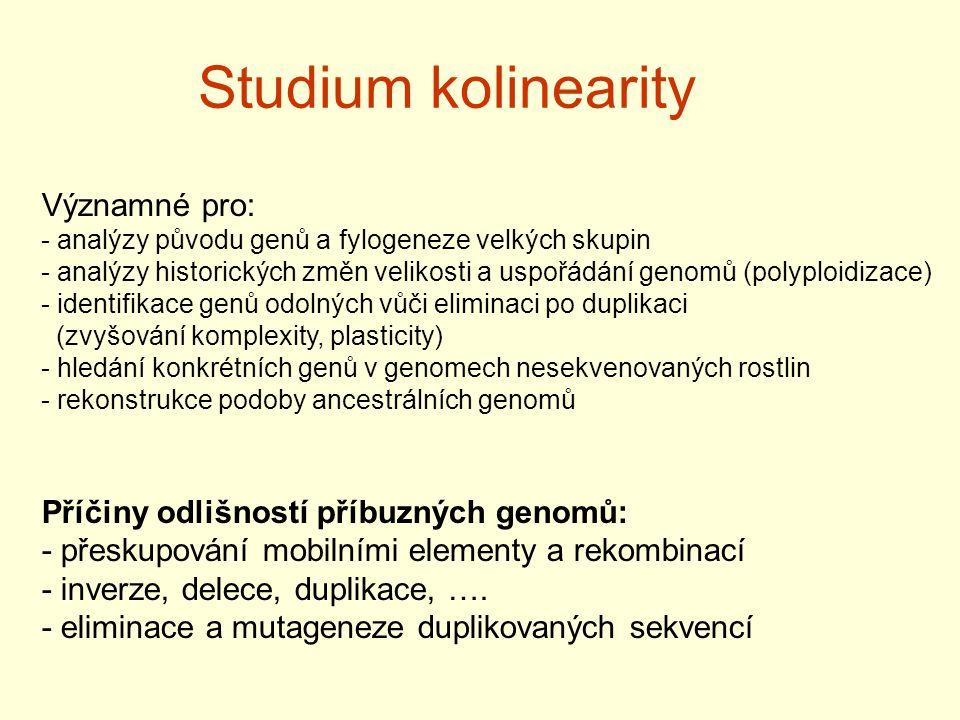 Studium kolinearity Významné pro: